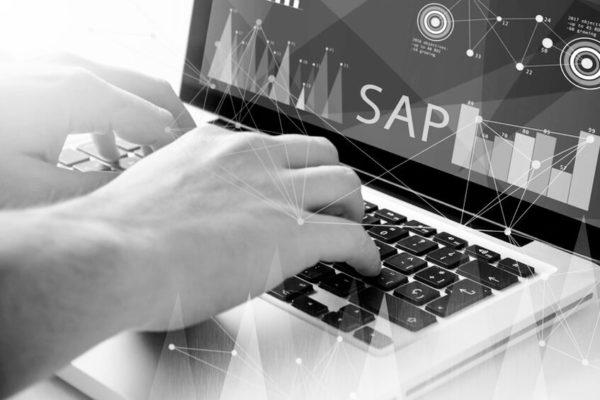 Bild mit Laptop und SAP-Zugriff